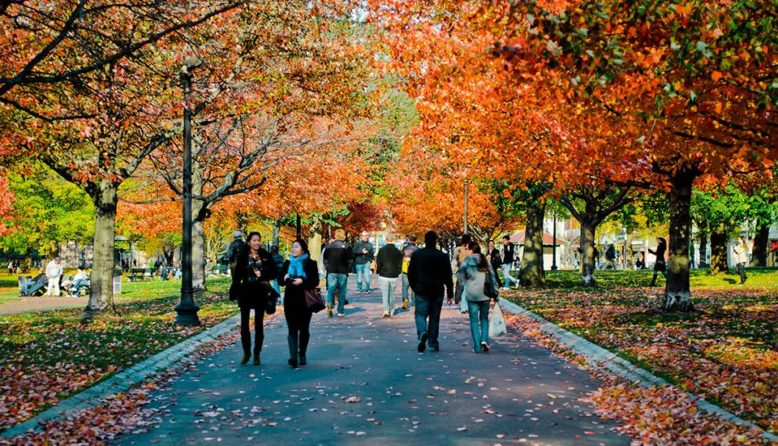 People walking in Boston Common in the fall