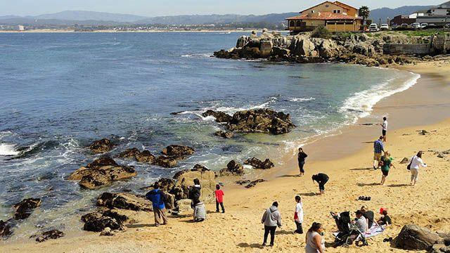 a beach in Monterey