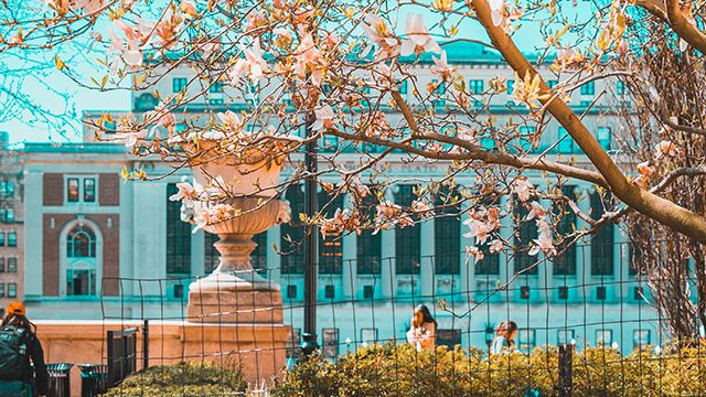 Columbia University in NYC