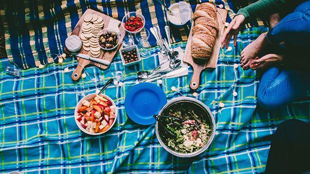 a group having a picnic