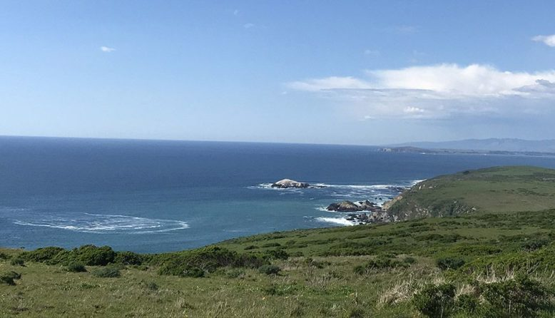 Tomales Point trail in Point Reyes