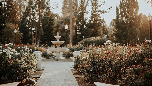 International World Peace Rose Garden in Sacramento
