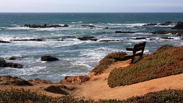 Bench overlooking the ocean at Pescadero Beach