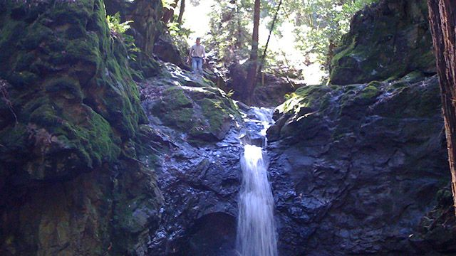 Man at Cascade Falls in Mill Valley
