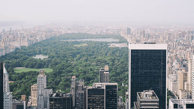 an aerial view of central park