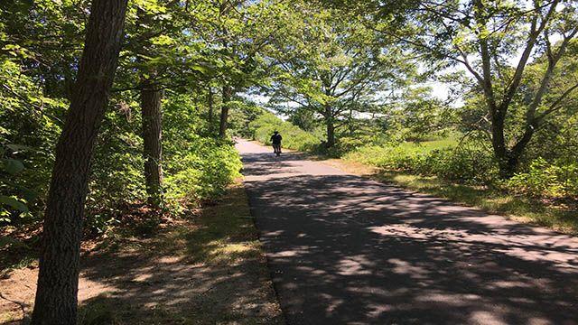biking near HI Eastham