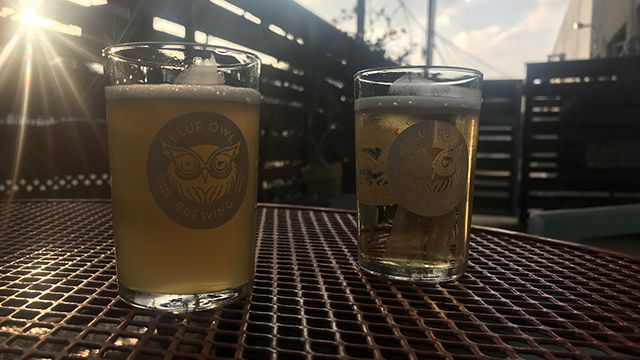 a tasting flight at blue owl brewery in austin